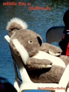Logo Koala ein14 Smaller
